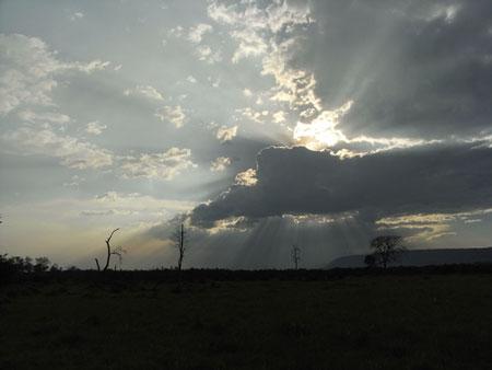 マサイマラの大地