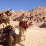 今年の年末は初の中東旅行に決定!