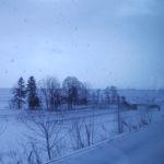 富良野スノーボードツアー2002