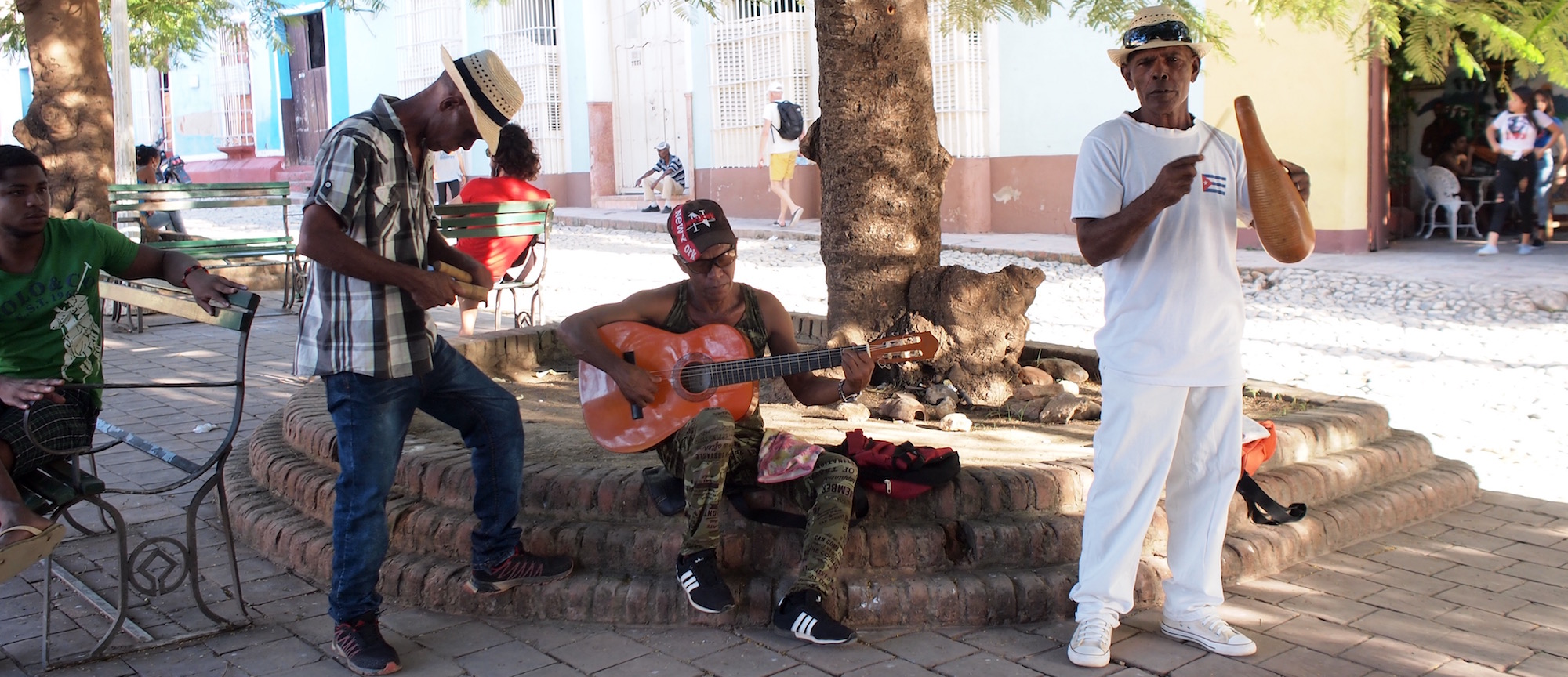 trinidadmusician