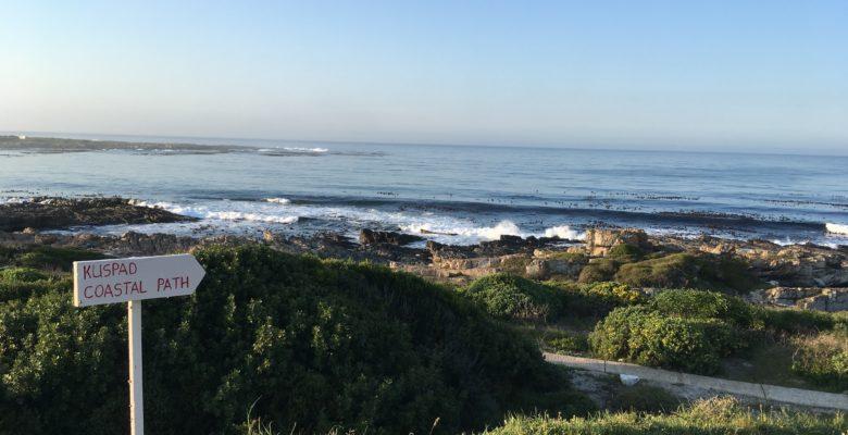 海岸線の散歩道