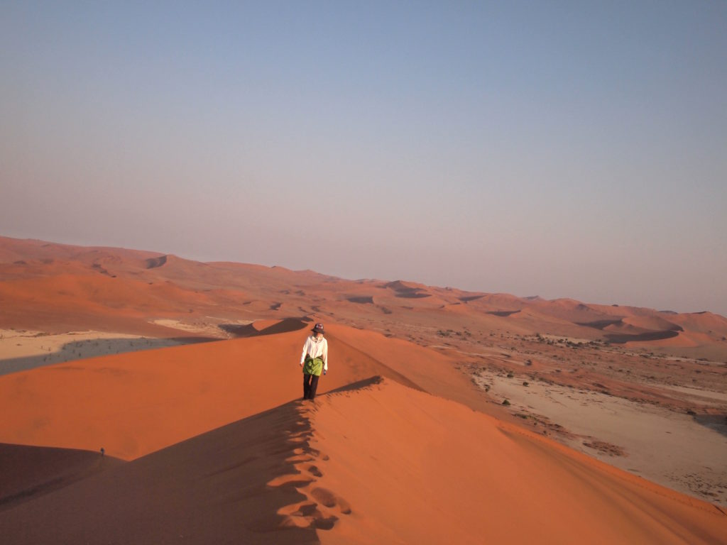 砂漠をとぼとぼ歩く